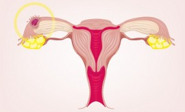 How Long Does Implantation Bleeding Last